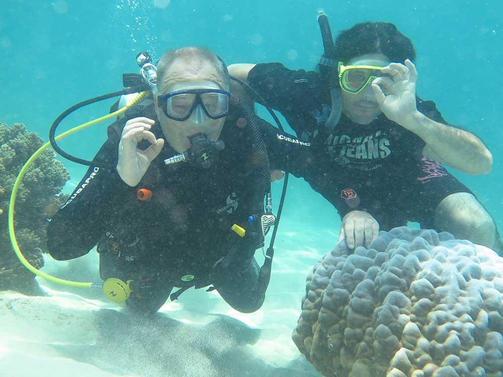 Dive safari for three days two nights