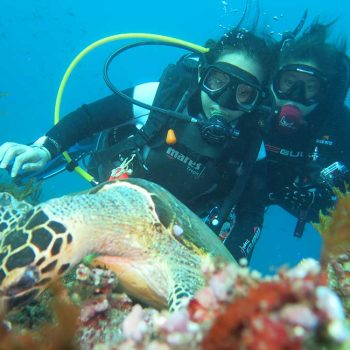 Dive safari for two days one night